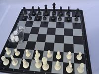 Игра в шахматы: положительные стороны