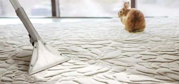Химчистка ковров Львов на дому или в офисе